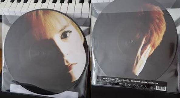 desenchantee_picture_disc